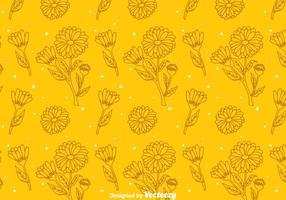 Calendula orange pattern vecteur
