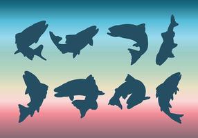Vecteur libre d'icônes de truite arc-en-ciel