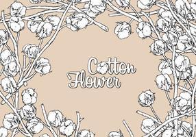 Dessin à main de fleur de coton vecteur gratuit