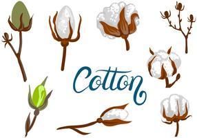Vecteurs de coton gratuits vecteur