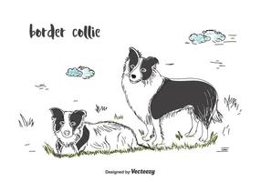 Vecteur border collie