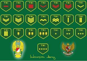 Rang de l'armée indonésienne vecteur