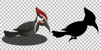 jeu de caractères de dessin animé oiseau pic vecteur