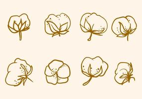 Vecteur de fleur de coton gratuit à la main
