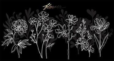 dessin à la main de fleur et croquis vecteur