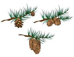 ensemble de cônes sur les branches. vecteur