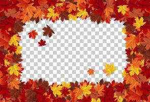 fond de cadre automne feuille d'érable