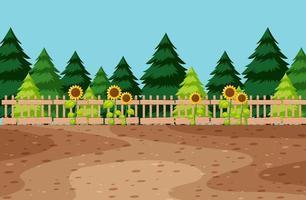 espace vide dans le jardin avec tournesol vecteur