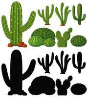 ensemble de plante de cactus vecteur
