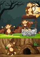 Groupe de singes dans de nombreuses poses dans un parc animalier