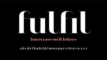lettres d'affichage minuscules serif modernes vecteur
