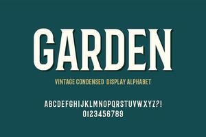 alphabet d'affichage condensé vintage vecteur