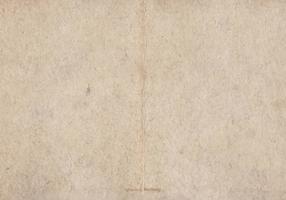 Vieille texture de vecteur en carton