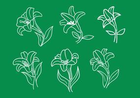 Vecteurs de Lily de Pâques