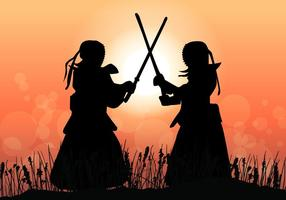 Kendo master combat au coucher du soleil