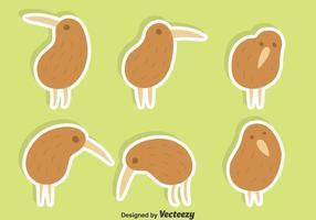 Ensemble mignon de vecteur oiseau kiwi
