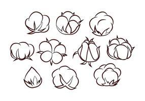 Vecteur de fleur de coton gratuit