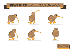 Pack de vecteur libre d'oiseaux kiwi