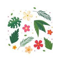 collection de fleurs et de feuilles d'été vecteur