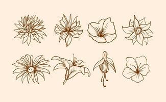 Vecteur fleur fleuri à main libre