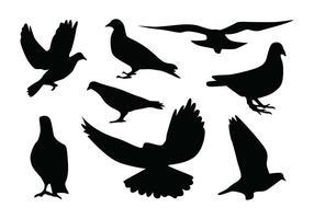 Vecteurs de silhouette de pigeon vecteur