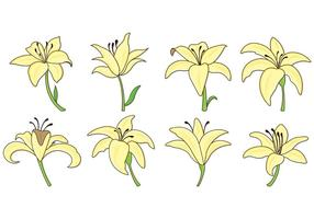 Set Of Easter Lily Icons vecteur