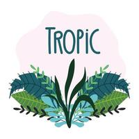 feuilles tropicales et feuillage avec lettrage
