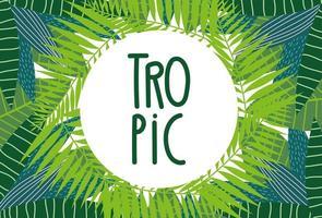 bannière de feuillage tropical