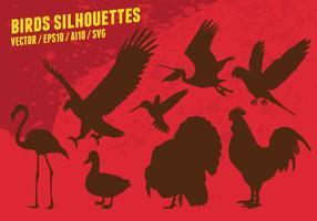 Silhouettes Oiseaux vecteur