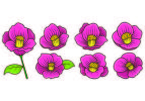 Set Of Camellia Vecteurs vecteur