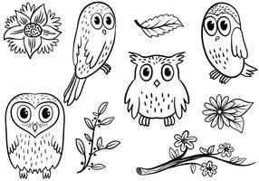 Owl gratuit 2 vecteurs vecteur