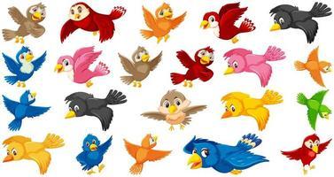 ensemble de personnage de dessin animé oiseau vecteur