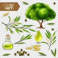 ensemble d'arbre à thé et d'huile