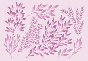 Vector Set of Branches