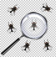 insectes mouches avec loupe isolé sur transparent vecteur