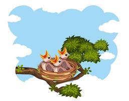 poussins et sa mère oiseau dans la nature vecteur