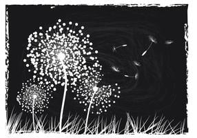 Image en noir et blanc de pissenlit Fond vecteur