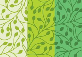 Set Leaf Background vecteur