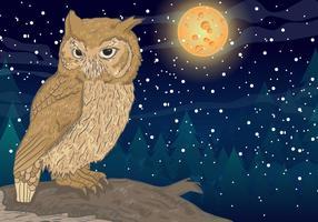 Owl Avec Full Moon Background vecteur