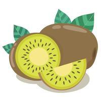 moitiés de kiwi frais aux feuilles vertes vecteur