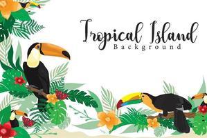 conception d'été de l'île tropicale oiseau toucan vecteur