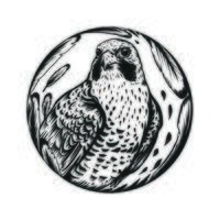 dessin au trait oiseau faucon vecteur