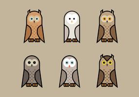 Brown Owls Vector