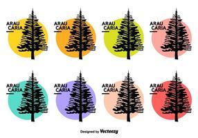 Araucaria icônes vectorielles vecteur