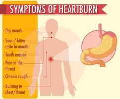 symptômes de l'infographie des informations sur les brûlures d'estomac vecteur
