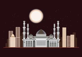 Hazrat Sultan Mosque at Night vecteur
