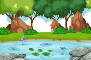 ruisseau dans la scène de la forêt avec des poissons