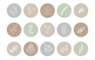collection d'icônes d'herbes botaniques en surbrillance pastel vecteur