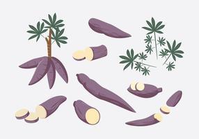 manioc Vector