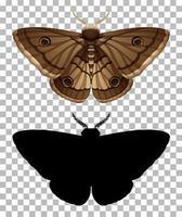 papillon de nuit et sa silhouette isolée vecteur